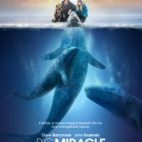 Crítica cine: Big Miracle (2012)