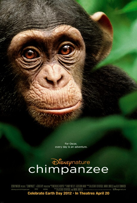chimpanzee-cover-poster